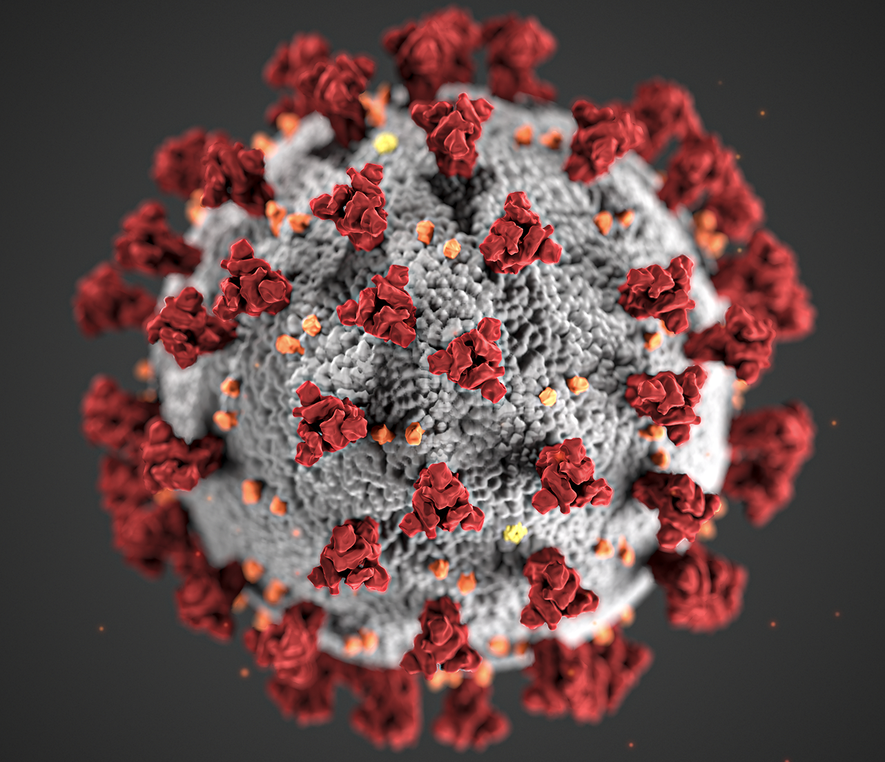 Coronavirus cell.